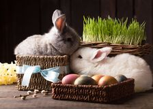 Two cute easter bunny with colored eggs. Over wooden background Royalty Free Stock Photos