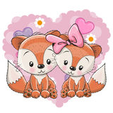 Two Cute Foxes Stock Image