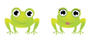 Two cute frog characters royalty free stock photo