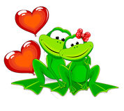 Two cute frogs Stock Photography