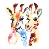 Two cute giraffes sing songs in karaoke Stock Photography