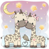 Two cute giraffes. On a stars background Stock Photos
