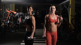Two cute girls doing exercises with dumbbells. They communicate with each other stock footage