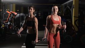 Two cute girls doing exercises with dumbbells. stock video footage