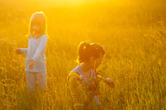 Two cute girls picking flowers on the meadow Stock Photography