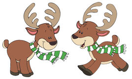 Two cute and happy reindeers Royalty Free Stock Images