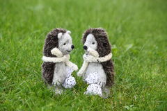Free Two Cute Hedgehog Toys In The Park Royalty Free Stock Photo - 36443585