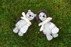 Two cute hedhehog toys resting in the grass Stock Photography