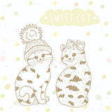 Two cute kitten Stock Image