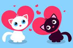 Two cute kittens in love Royalty Free Stock Photography