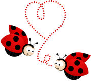 Two cute ladybirds in love Stock Photo