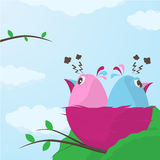 Two cute little birds having a disagreement. Cartoon illustration of two cute little birds, one pink female and one blue male, in a nest having a disagreement Stock Photos