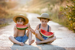 Two cute little boys, eating watermelon on a rural village path stock photography