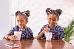 Two cute little daughters drinking their milkshakes after shopping with parents. After shopping. Two cute little daughters feeling good drinking their milkshakes stock photo