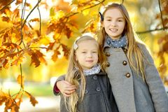 Two cute little girls having fun on beautiful autumn day. Happy children playing in autumn park. Kids gathering yellow fall foliag. E. Autumn activities for royalty free stock photography