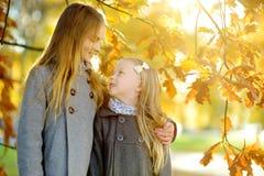 Two cute little girls having fun on beautiful autumn day. Happy children playing in autumn park. Kids gathering yellow fall foliag stock photo