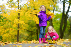 Two cute little girls having fun on beautiful autumn day. Happy children playing in autumn park. Kids gathering yellow fall foliag. E. Autumn activities for Stock Photography