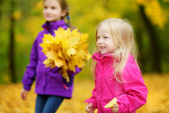 Two cute little girls having fun on beautiful autumn day. Happy children playing in autumn park. Kids gathering yellow fall foliag stock photos