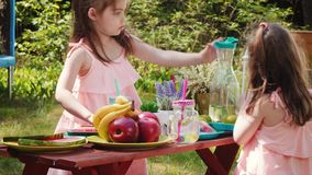 Two little girls are drinking lemonade at a summer picnic. Two cute little girls in pink dresses are drinking lemonade at a summer picnic stock footage