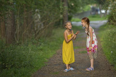 Two cute little girls talking animatedly standing in a Park. Summer. Stock Images