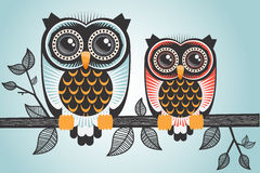 Two cute little owls Stock Photography