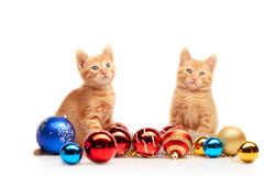 Two cute little red kittens sitting near colorful and sparkly Christmas toys and looking straight at camera Stock Photo