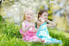 Two cute little sisters in blooming cherry garden Royalty Free Stock Images