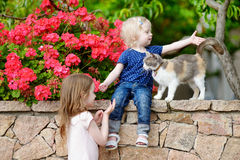 Two cute little sisters and a cat Royalty Free Stock Image