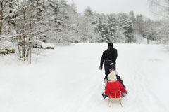Two cute little sisters enjoying sleigh ride with their father on snowy winter day. stock images