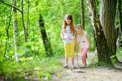 Two cute little sisters having fun during forest hike on beautiful summer day. Active family leisure with kids. Stock Photos