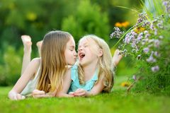 Two cute little sisters having fun together on the grass on a sunny summer day. stock images
