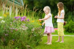 Two cute little sisters playing in a backyard. Children admiring blossoming flowers bed. Royalty Free Stock Photography