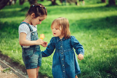Two cute little sisters playing with flower on the walk in summer Royalty Free Stock Photo