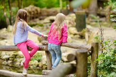 Two cute little sisters watching animals in the zoo on warm and sunny summer day. Children watching zoo animals standing by the fe Royalty Free Stock Photo