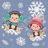 Two Cute Monkeys Stock Photo