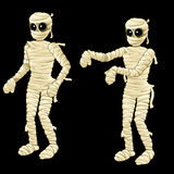 Two cute mummy on a black background Stock Image