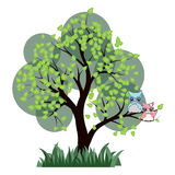 Two cute owl on tree branch vector illustration. Cute owl on green tree branch on white isolated Stock Photos