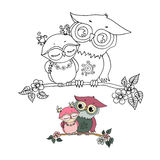 Two cute owls fallen in love Royalty Free Stock Image