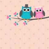 Two cute owls in love. Vector wedding card Stock Photos