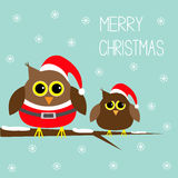 Two cute owls. Santa Claus costume, hat. Snowflakes.  Royalty Free Stock Photo