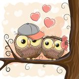 Two Cute Cartoon Owls with hearts Stock Photos