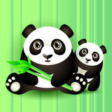 Two cute pandas Royalty Free Stock Images