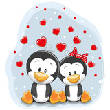 Two Cute Penguins Stock Photo
