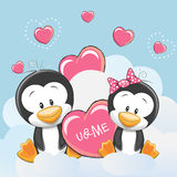 Two Cute Penguins Royalty Free Stock Photo