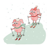 Two Cute Pigs Skier. Lovely cartoon Character on white background. Vector illustration of winter sport activities, outdoor playing Royalty Free Stock Photography