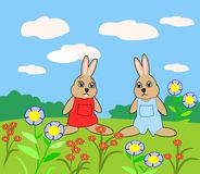 Two cute Rabbits. Standing in a flower meadow Royalty Free Stock Photos