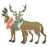 Two cute reindeers. Wearing scarves, vector illustration Stock Image