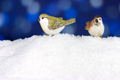 Two cute robin on snow Stock Photos