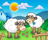 Two cute sheep behind fence. Color illustration Royalty Free Stock Photos