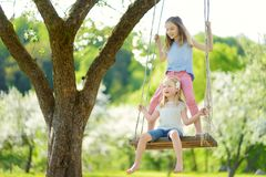 Two cute sisters having fun on a swing in blossoming old apple tree garden outdoors on sunny spring day. Spring outdoor activities for kids royalty free stock images